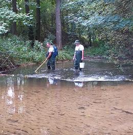 Pracownicy Wydziału Biologii Środowiskowej realizują projekt w ramach krajowego monitoringu ichtiofauny rzek